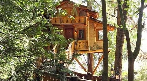 4-29-09-treehouse