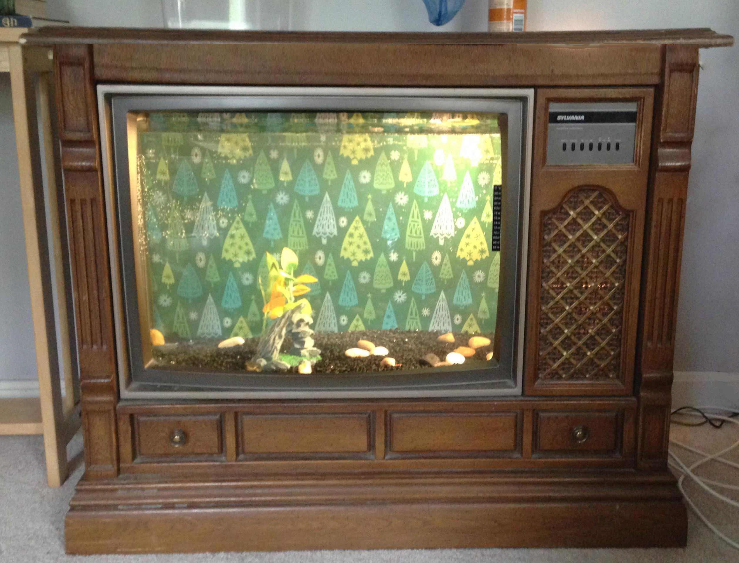 Fish tank near tv - Tv Fish Tank